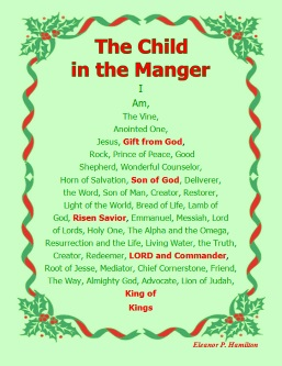 The Child in the Manger Cover