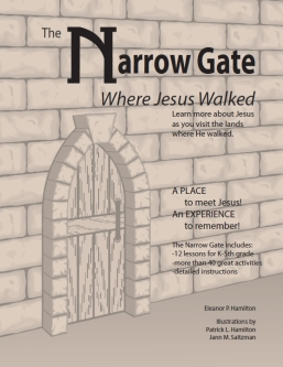 Narrow Gate Book Cover